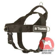 ハスキー犬の散歩用リード 本革製 二つハンドル付き